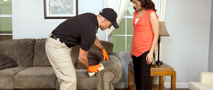 Mechanicsburg, PA carpet upholstery cleaning